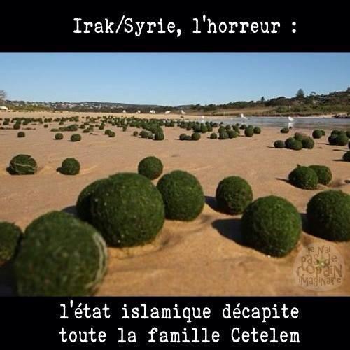 Isis decapite cetelem