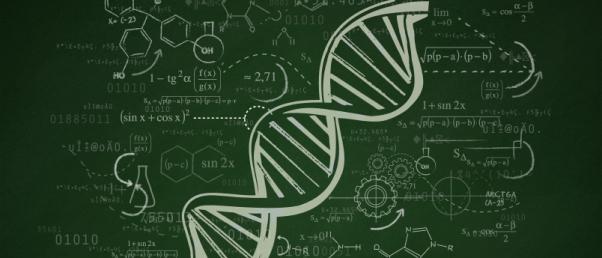 Modif genetique