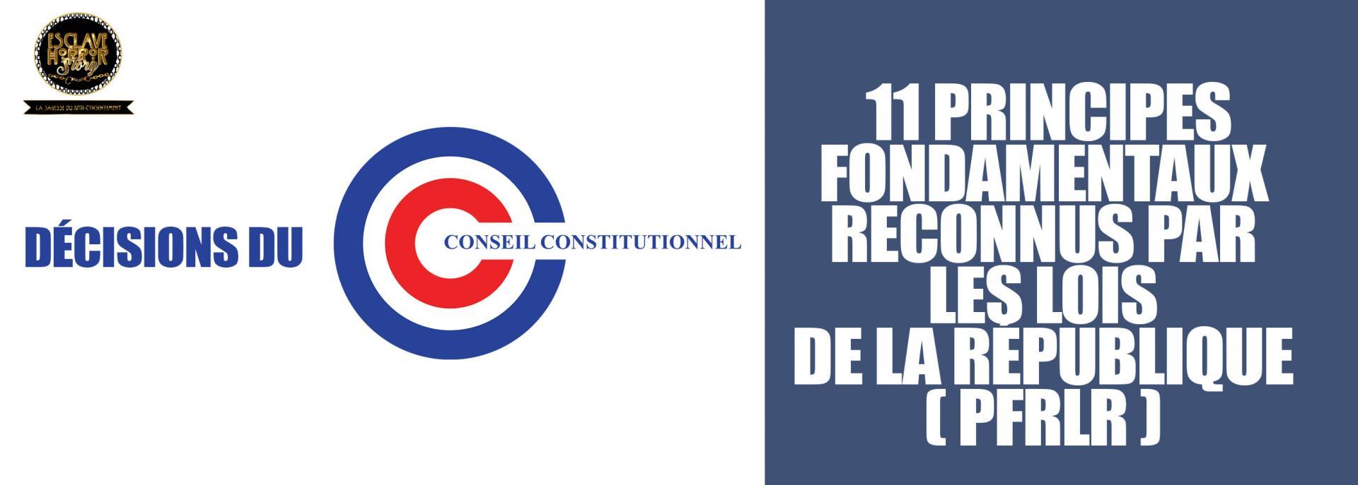 11 principes fondamentaux reconnus par les lois de la republique