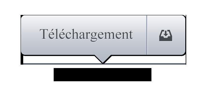 Bouton telechargement